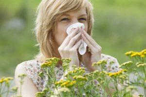 Seasonal Allergy Help